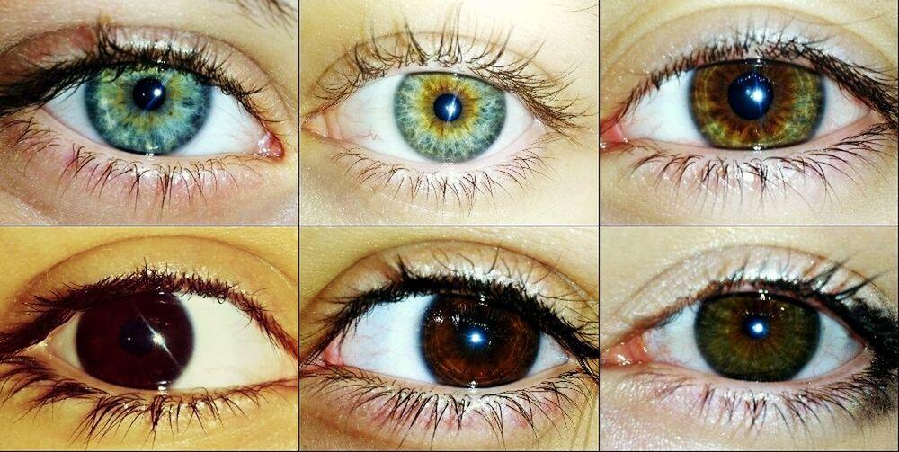 Глаза собратьев по Вселенским мукам тоже шикарны :3 Eyes Beautiful My_foto