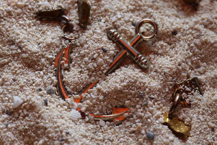 High angle view of crab on sand