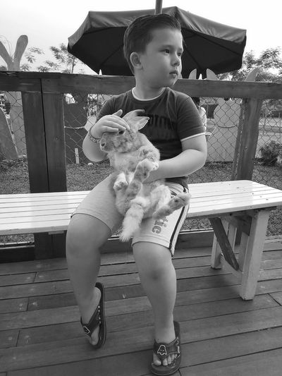 Baby Childhood One Person People Full Length Babies Only Holding Day Child Playing Sitting Outdoors Real People Adult Rabbit Bunny