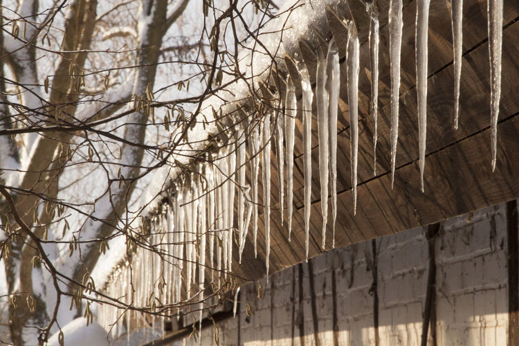 Low angle view of icicles on wall