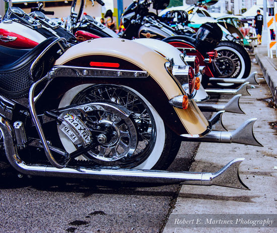 """There was plenty of """"tail"""" at the Pacific Kulture Fest today Check This Out Taking Photos Luckywelivehawaii Motorcycles Harleydavidson Oahu, Hawaii EyeEm Best Shots The Minimals (less Edit Juxt Photography) Hello World"""