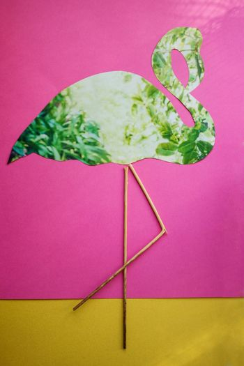Flamingo no. 2 Collage Copy Space Minimalism Eye4photography  EyeEm Gallery EyeEm Best Shots Flamingo Indoors  Colored Background Studio Shot Green Color Wellbeing Creativity Pink Color Still Life