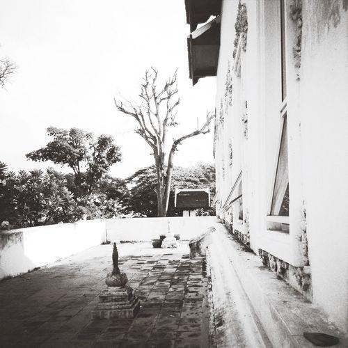 Architecture Black & White Popular Photos Myfavoriteplaces