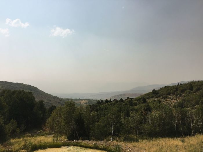 wildfire smoke creeps in again this afternoon. Wasatch County Heber City Wasatch Mountains Sky Plant Tree Nature Growth Tranquility Scenics - Nature