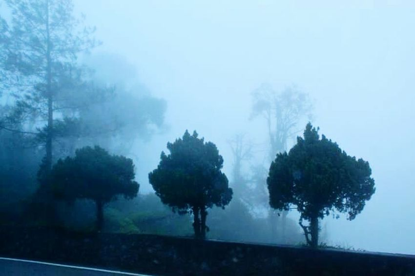 Foggy Misty Poor Visibility Off To Genting Malaysia Taking Photos Travel Photography