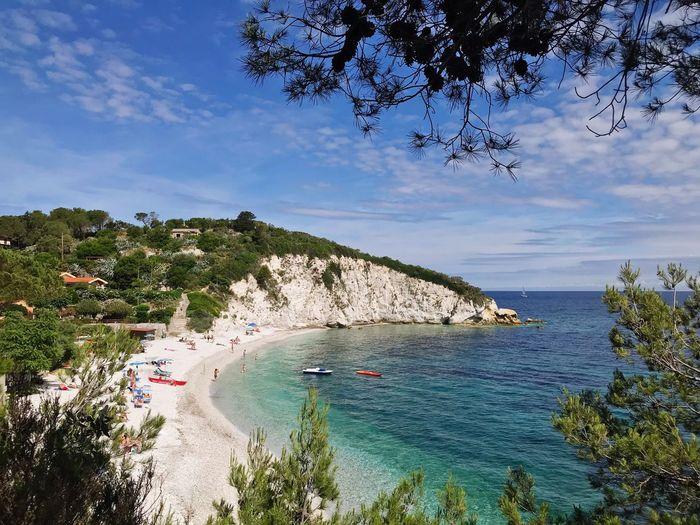 Beach Tree Water Plant Sky Beauty In Nature Cloud - Sky Nature Scenics - Nature Tranquility Beach Idyllic