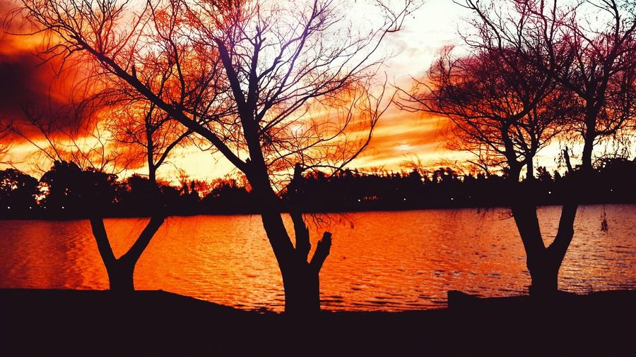 "Lago ""San Agustín "" Gral Levalle, Cba, Arg Nature Lake Sun Orange Color First Eyeem Photo"
