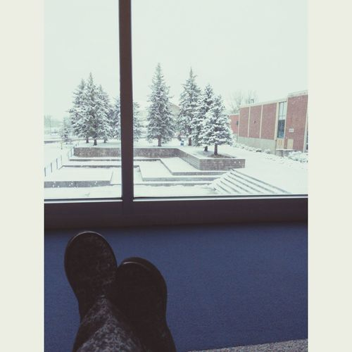 Snow ❄ Colorado Schoollibrary