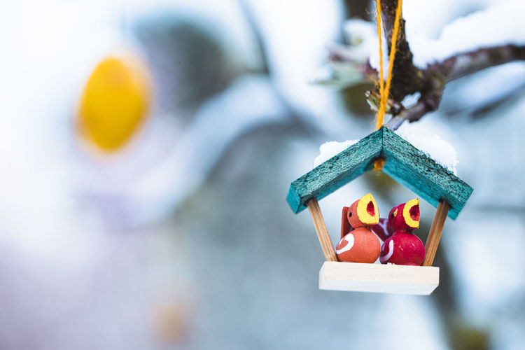 Close-up of christmas decorations hanging on snow