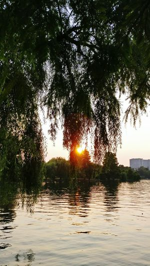 Lake View Beautiful Sunset Check This Out Naturephotography Taking Photos Relaxing