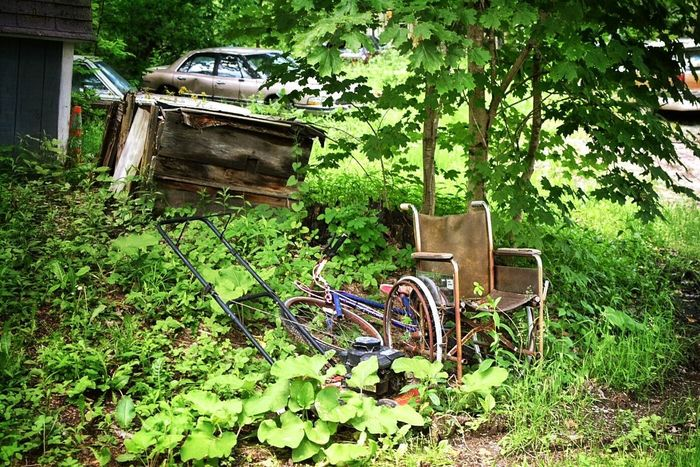 Growth Wheelchair Bike Rusty Old Life Stories Lawnmower Overgrown Abandoned Home Aging Rural Scene Country Life Upstate New York Grass Chair Nature No People Green Color Plant Day Tree Outdoors Weathered