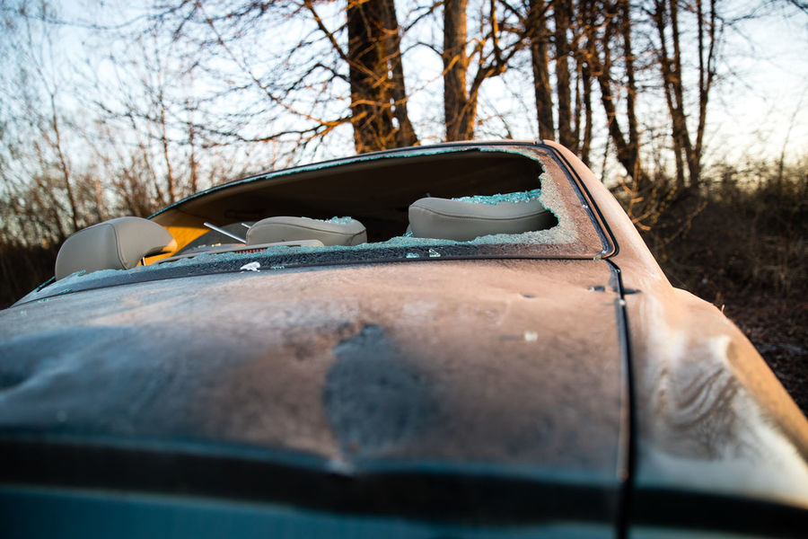 Abandoned Bodywork Botany Broken Down Broken Down Car Broken Windshield Car Cracked Dirty Dusty Rear Window Vandalism Vandalized