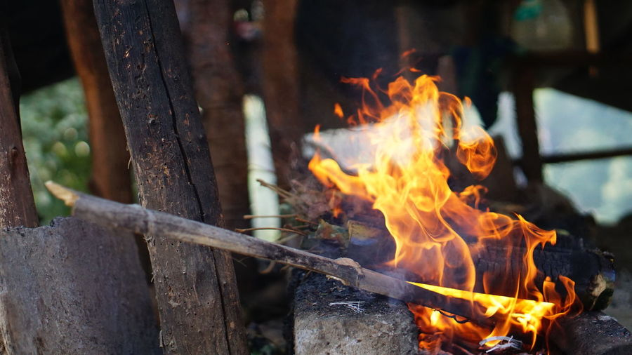 Fire in detail Sony Sony Alpha Sony Photography Araku Vacations Nwin Photography Firewood Fire Sony A6000 EyeEm Selects Fire - Natural Phenomenon Flame Burning Heat - Temperature Glowing Outdoors No People Close-up Day Food