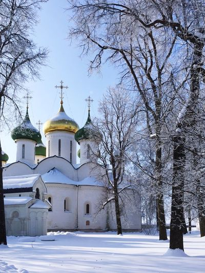 Heritage Orthodox Church Suzdal, Goldenring Religion Place Of Worship Building Exterior Belief Architecture Tree Spirituality
