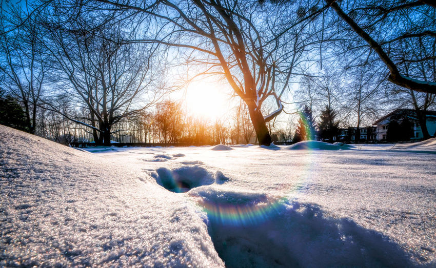 © #Marcin_Adrian https://www.marcinadrian.de Snow ❄ Bare Tree Blizzard Branch Cold Temperature Day Environment Frozen Ice Landscape Nature Outdoors Plant Scenics - Nature Sky Snow Snowcapped Mountain Snowing Sun Sunlight Sunrise Tranquility Tree White Color Winter