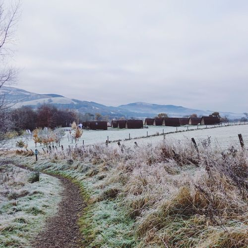 Winter in Glentress