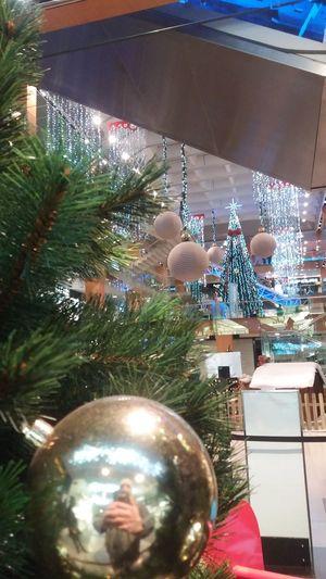 Celebration Tree No People Christmas Christmas Ornament Vacations Indoors  Christmas Tree Day Mall Rat Mallrats