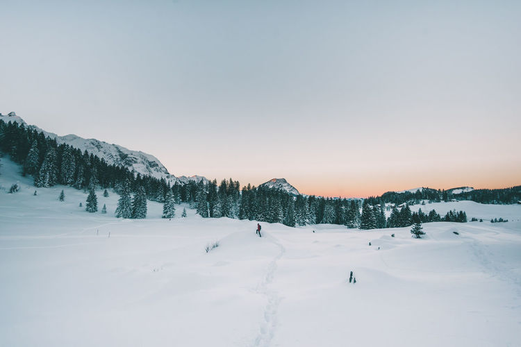 Hiking with snow shoes in beautiful and silent winter wonderland Adventure Alpenglow Appenzellerland Cold Glow Hike Hiking Landscape Morning Nature Peace Schweiz Schwägalp Silence Snow Suisse  Sunrise Svizzera Swiss Swiss Alps Swiss Mountains Switzerland Tranquility Wall Winter Connected By Travel Shades Of Winter Go Higher The Great Outdoors - 2018 EyeEm Awards