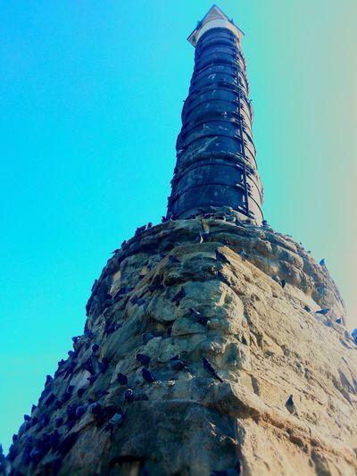 Çemberlitaş Çemberlitaş Kuşları Guvercinler Kumru Architecture_collection Historical ArtifactFatih Istanbul