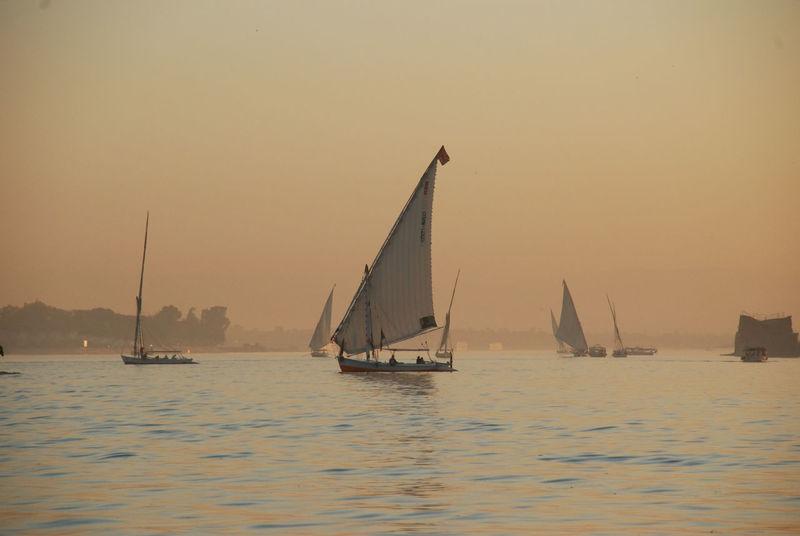 Aswan Aswan, Egypt Felucca Felucca Boats. Feluccas On The Nile Nile River NileRiver Sailboat Sailing