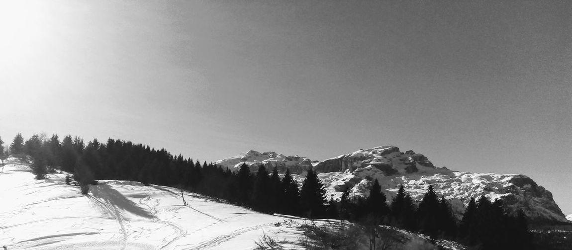 Montagne delle Dolomiti (5) Black And White Skiing Dolomites, Italy Snow Mountain Cold Temperature Winter Forest Pine Tree Sky Landscape