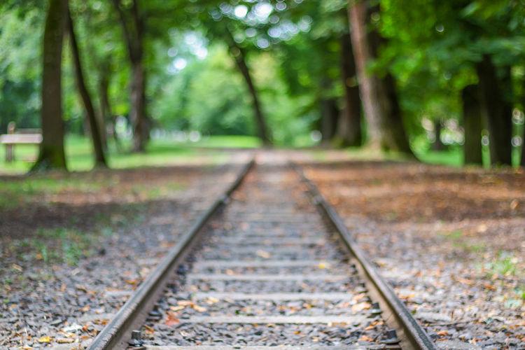 Rails =) Nature