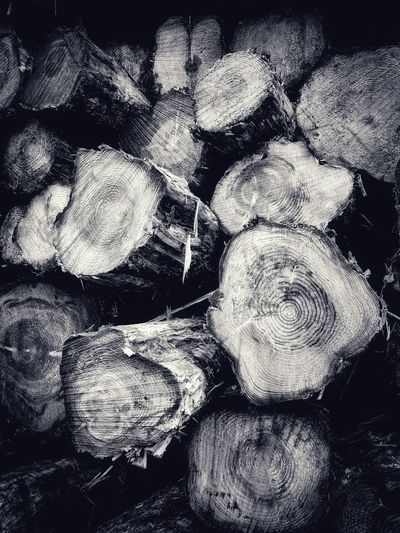 Log Pile Blackandwhite Black And White Black & White Blackandwhite Photography B&W Collection B&w Abstraction Abstracted Monochrome Monochromatic Monochrome _ Collection Wood Grain Patterns In Nature Wood Pile Abstract Full Frame Backgrounds Close-up Day