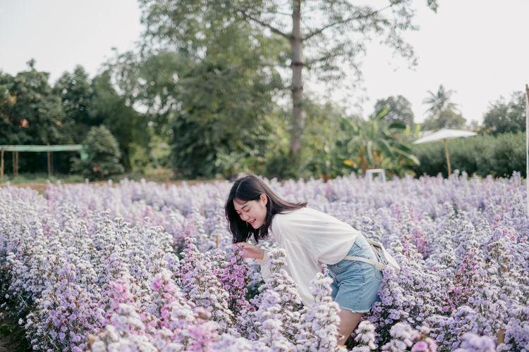 Rear view of woman on purple flowering plants
