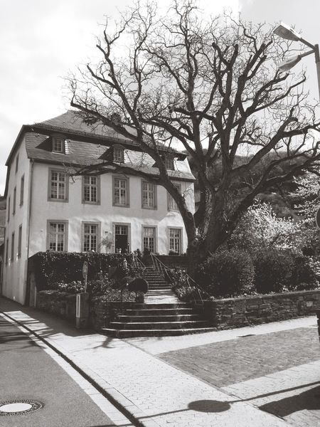 Altes 🏡 im Ahrtal 🍷🍷🍷👍 Ahr Wine River House Old Nature_collection IPhoneography Garden EyeEm Nature Lover Black And White Black&white Flowers Blackandwhite Streetphotography Streetphoto_bw Trees Landschaft Landscape_photography Landscape Nature Flower