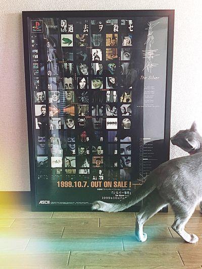 額装変えた. 猫とシルバー事件. シルバー事件 TheSilverCase IPhoneography Cat My Life My Room My Treasure EyeEm Gallery