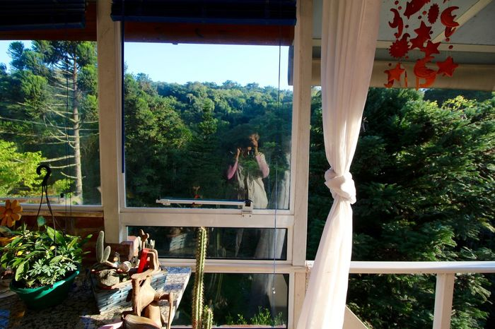 Standing in and standing out...in the middle of the forest! Balcony Curtain Day Forest Greenery In And Out Leisure Activity Lifestyles My Place Nature's Diversities Plant Self Portrait Taking Photos The Great Outdoors - 2016 EyeEm Awards
