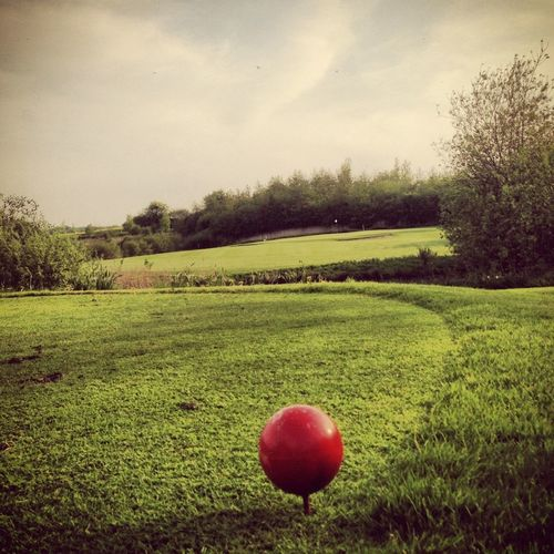 Golfing EE_Daily: Green Thursday EyeEm Nature Lover EyeEm Best Shots