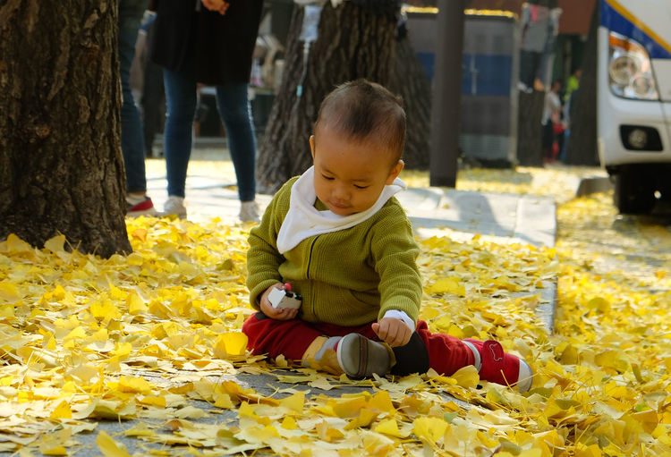 Autumn Fun Sit Sitting Childhood Day Fall Full Length Joy Lifestyles One Person Outdoors Playing Real People Sitting Yellow EyeEmNewHere Connected By Travel