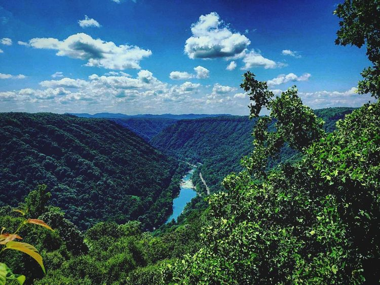 New River Gorge WV Wv_igers Wv_nature West Virginia Beauty West Virginia Photography West Virginia Scenery Beauty Mountain Tree Agriculture Nature Green Color Cloud - Sky Beauty In Nature Growth Sky Outdoors Day No People Scenics Landscape Rural Scene Plant Blue IPhoneography First Eyeem Photo The Week On EyeEm