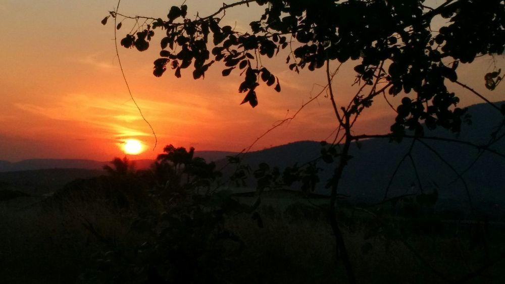 -::- Não chore por ter perdido o pôr do sol, pois as lágrimas te impedirão de contemplar as estrelas. Check This Out Taking Photos Nature Sunset Sun Original Skyline Beutiful Day