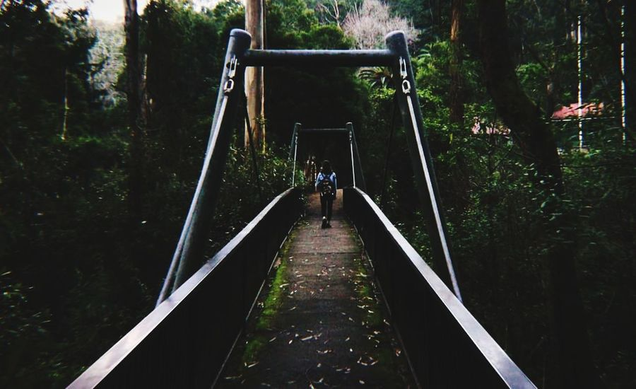 crossing back into reality Nature National Park Contrast Dream EyeEm Nature Lover EyeEmNewHere Nature Photography Lost Colours Distortion Blur View Trail Walking Hiking Adventure National Park Manmade Tree Full Length Adventure Forest Footbridge Water Bridge - Man Made Structure Backpack