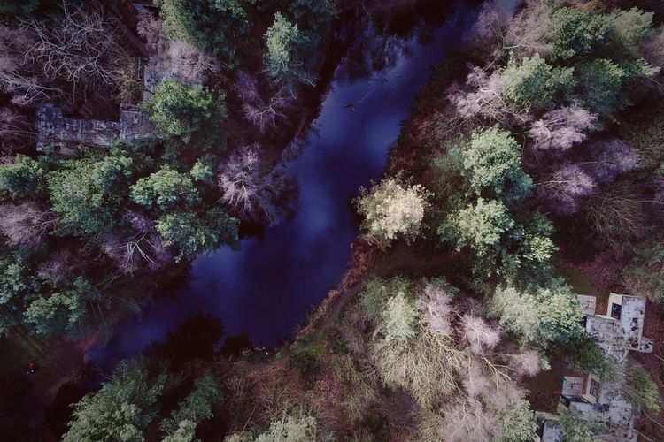 Nature Beauty In Nature Tranquility Outdoors Water Sky Aerial View Tranquil Scene Trees Stream Tree Looking Down Taking Pictures Nature_collection EyeEm Gallery Eye4photography  Taking Photos Exploring Flying High