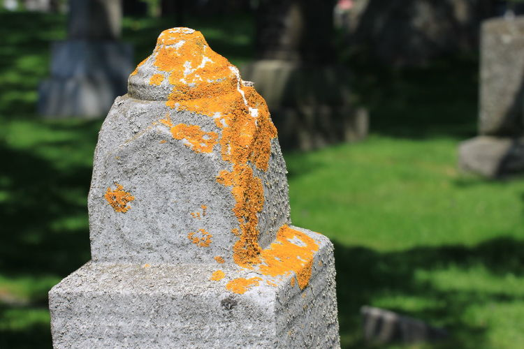 Close-up of stone sculpture