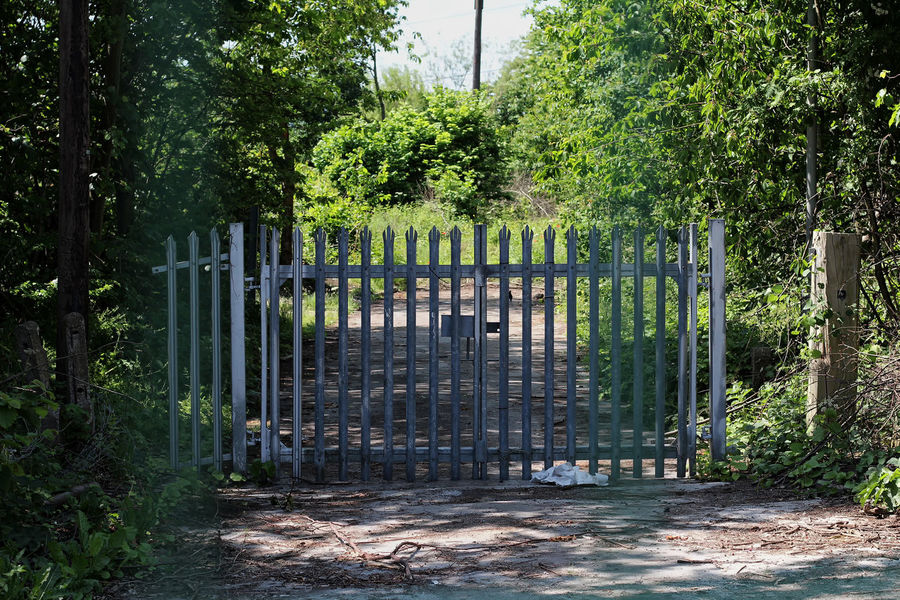 Locked. Gates Architecture Barrier Boundary Closed Closed Gate Day Entrance Fence Forest Gate Green Color Growth Land Lane Nature No People Outdoors Plant Protection Safety Security Tree Wrought Iron