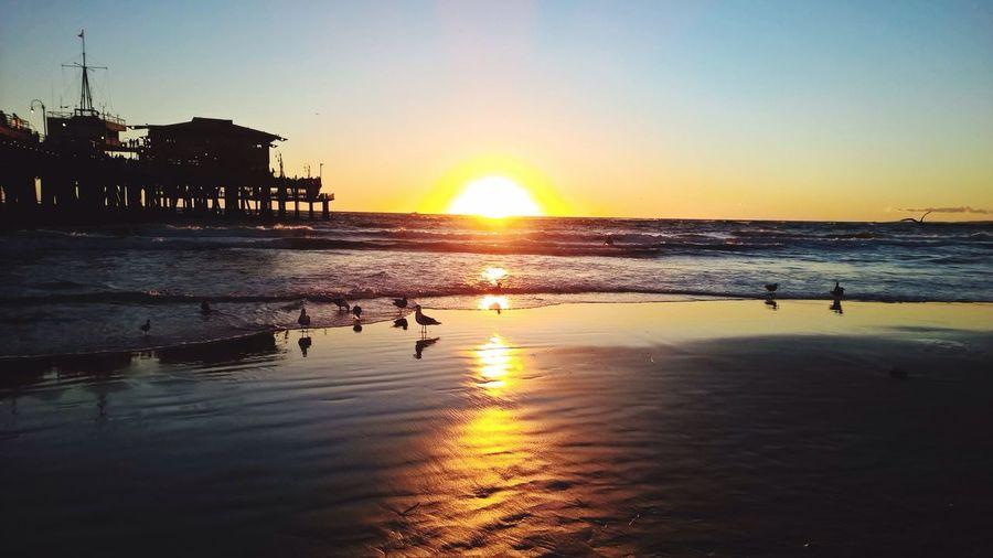 Christmas Sunset Santa Monica Santa Monica Pier Sunset Sunset_collection Sunset Silhouettes Sunshine Beach Beachphotography On The Beach Beach Photography Silhouette Enjoying Life Life Is Waiting Smartphonephotography My Smartphone Life Smartphone Photography