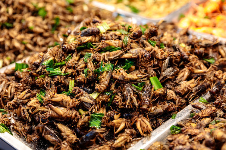 Close-up of fried locusts for sale