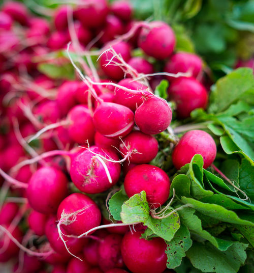 Abundance Close-up Day Food Food And Drink For Sale Freshness Fruit Green Color Healthy Eating Large Group Of Objects Market No People Outdoors Pink Color Radish Red Root Vegetable Selective Focus Vegetable Wellbeing