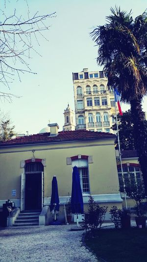 Fransizkulturmerkezi Farfromthemaddingcrowd Beyoğlu Border Crossing Istanbulove Somepeaceplease Ist_instagram Istanbul City