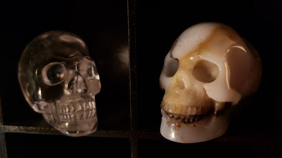 Skull Crystal Skull Collection Before Bed Healing EyeEm Selects Close-up