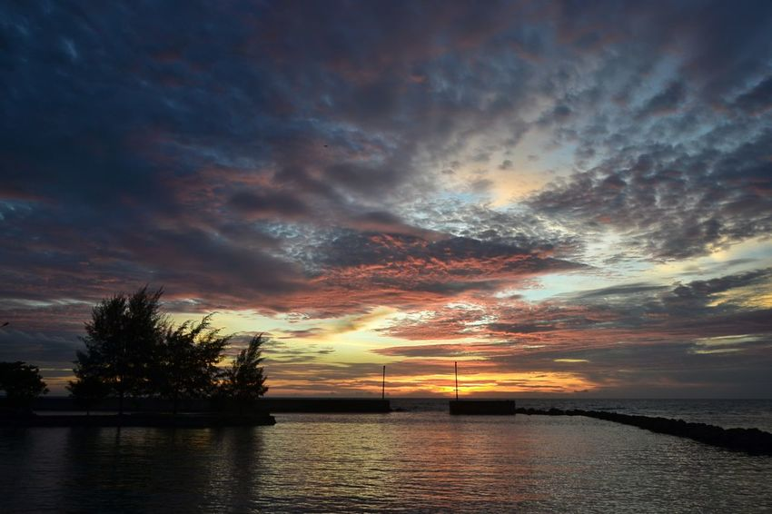 Cloud - Sky Reflection Sunset Dramatic Sky Water Tranquil Scene Beauty In Nature Sky Nature Horizon Over Water Multi Colored Landscape Tree Viewscape Sunsets