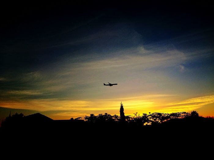 Sunset Golden Hour Flight Landing Plane Airport South Africa Johannesburg Ekurhuleni Airplane Flying Airbus Saa