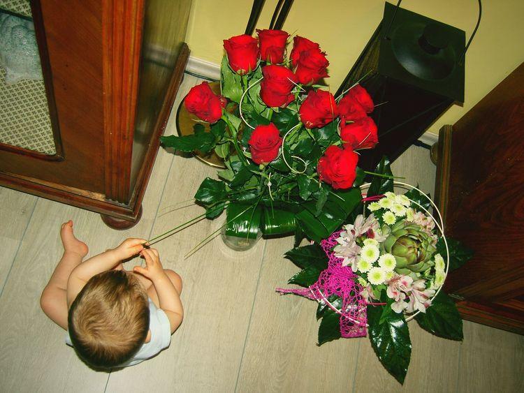 Baby Babyfeet Red Love Kvety Gift Bouquet Red Roses Kytka Kytky