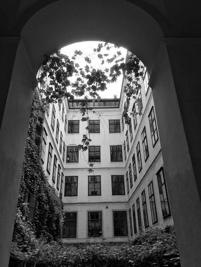 Architecture Built Structure Building Exterior Building Day No People Window Tree Nature Outdoors Arch Low Angle View Residential District Sky City Plant History The Past Growth Courtyard
