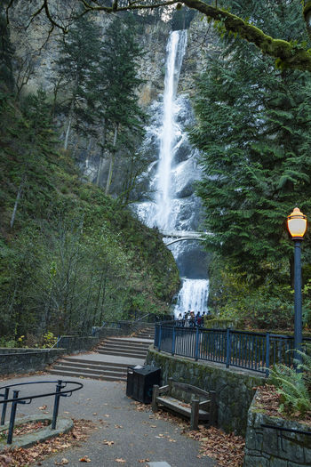 View from the back of the viewing area at Multnomah Falls in the Columbia River Gorge Morning Multnomah Falls  Oregon Oregon Beauty Beauty In Nature Dawn Early Morning Forzen Nature Outdoors Waterfall Waterfalls