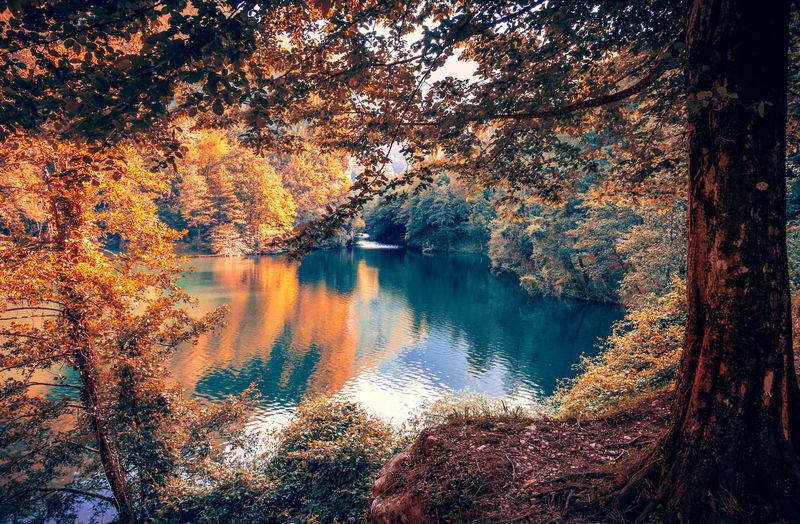 50+ Hidden Leaf Village Pictures HD | Download Authentic